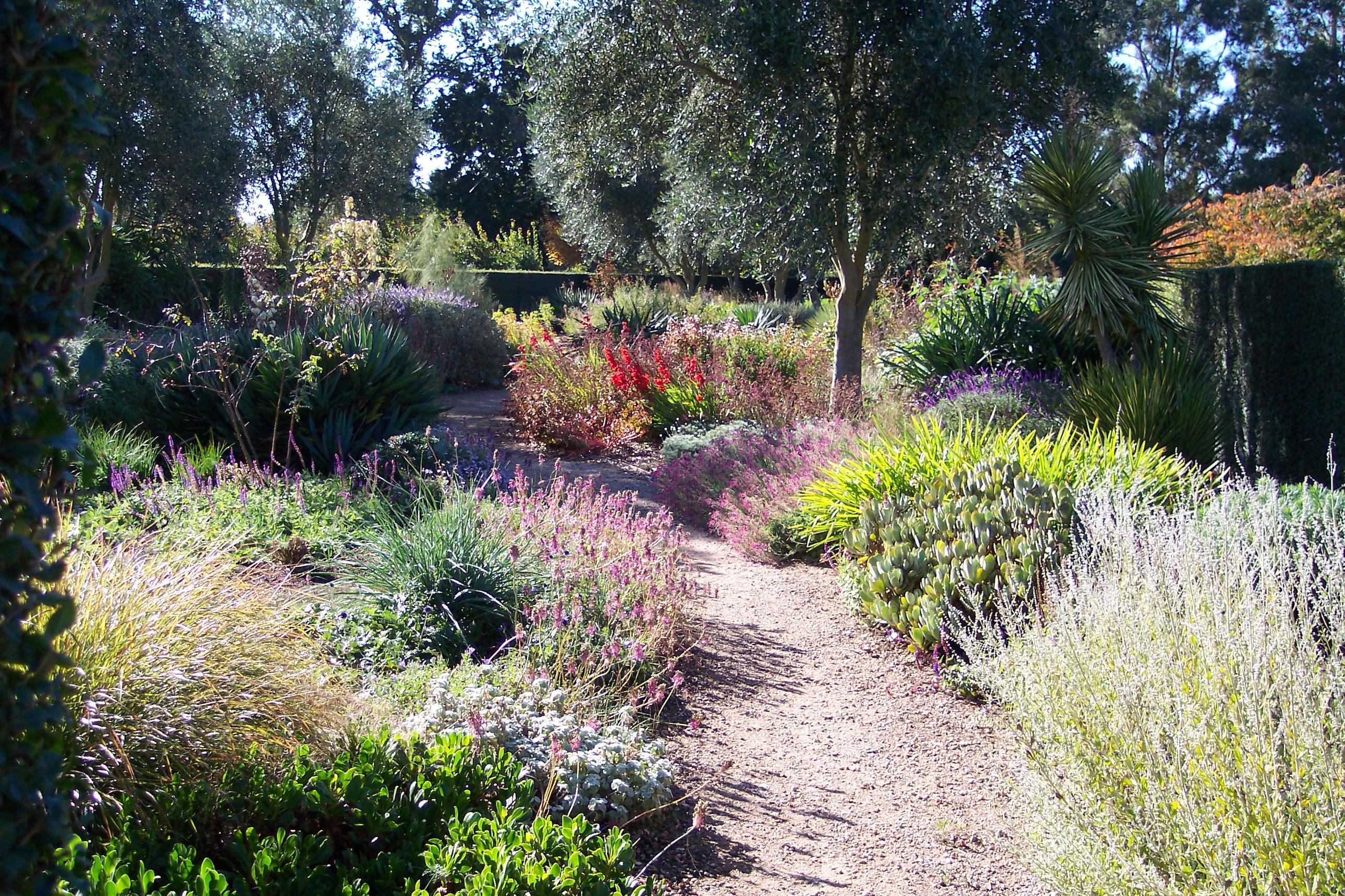 My Flower Garden 14 8 11 Adrian Kuys