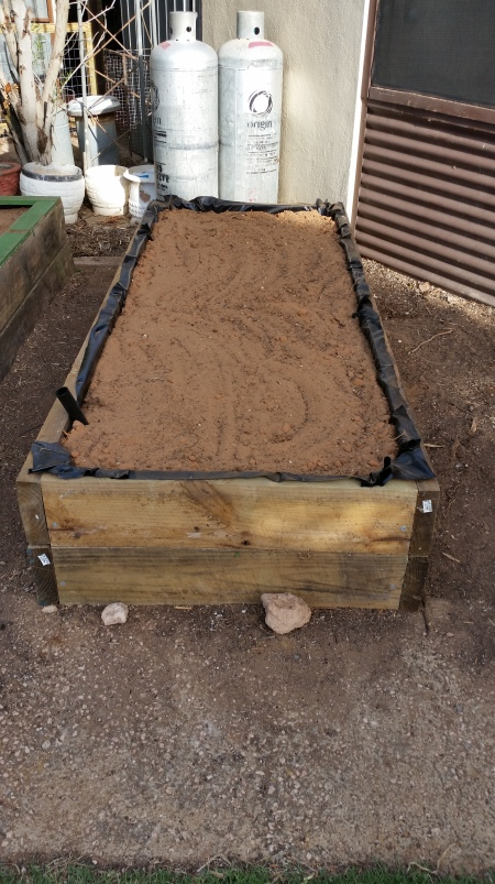 Garden soil filled to the top of the bed. Excess pond liner trimmed to the top of the bed and this will prevent any wood preservative from leaching into the bed.