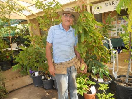 This is Joe after whom these connected gardens are named. Here he is showing off his pot grown Mango in January.